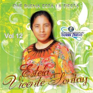 Que Buena Esta La Fiesta, Vol. 12 Albumcover
