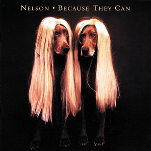 Because They Can album