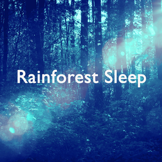Rainforest Sleep Albumcover