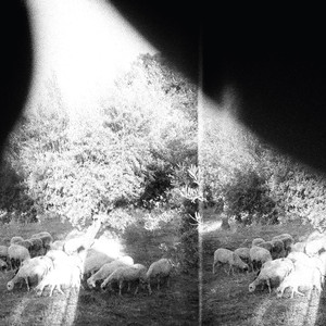 Godspeed You! Black Emperor, Peasantry or 'Light! Inside of Light!' på Spotify