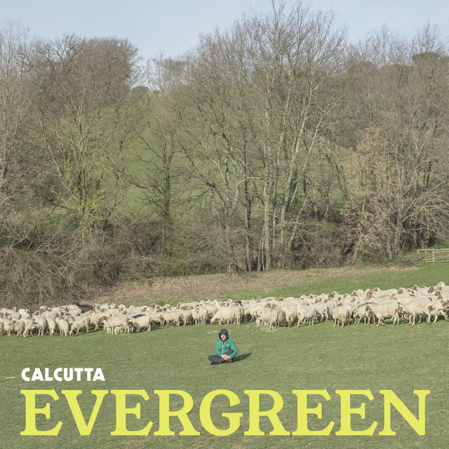 Album cover for Evergreen by Calcutta