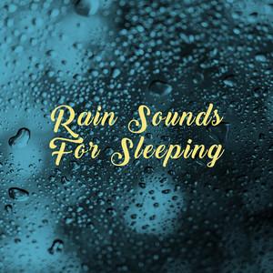 Rain Sounds For Sleeping Albümü