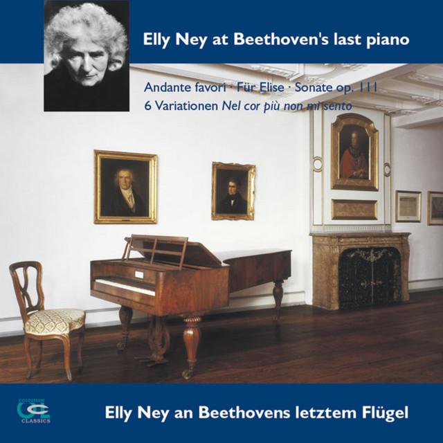 Beethoven sur instruments d'époque 40d6cb9fb39e71c61d6e0aff5aa266ab96d79799