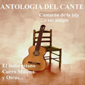 Antologia del Cante - Camarón de la Isla ...Y Sus Amigos Albumcover