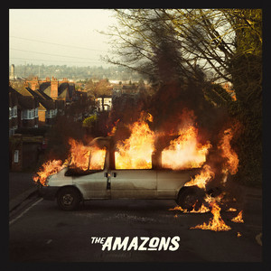 The Amazons Holy Roller cover