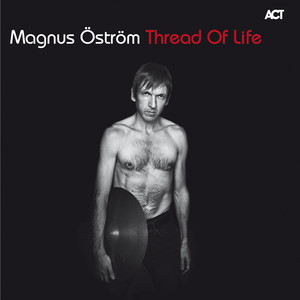 Magnus Öström, Afilia Mi på Spotify
