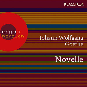 Novelle (Ungekürzte Lesung) Audiobook