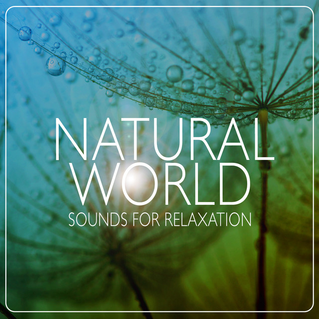 Natural World: Sounds for Relaxation Albumcover