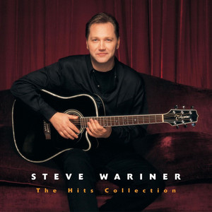 The Hits Collection: Steve Wariner album