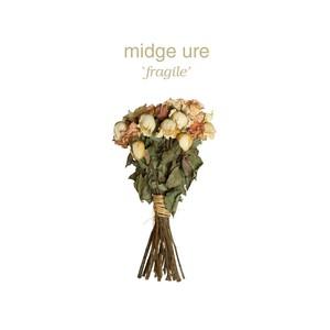 Fragile Albumcover