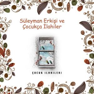 Süleyman Erkişi