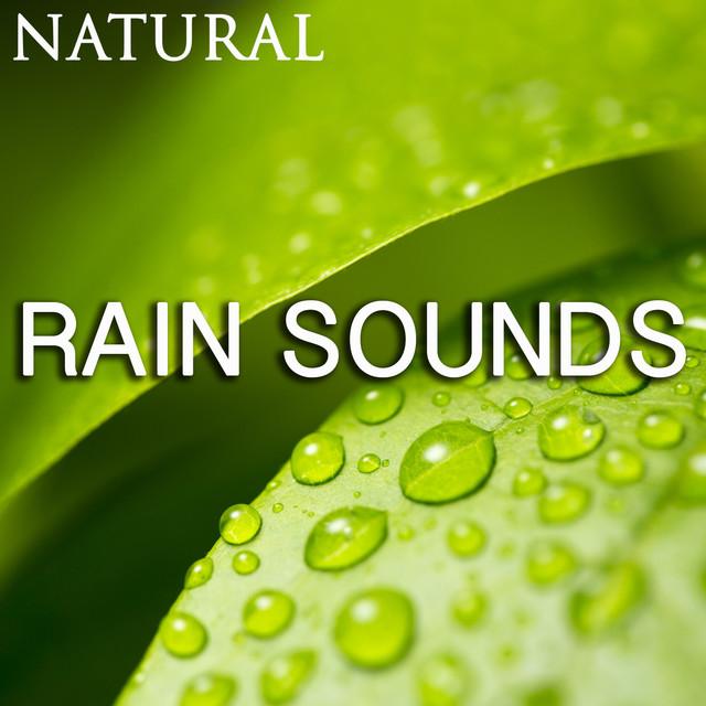 Natural Rain Sounds Albumcover