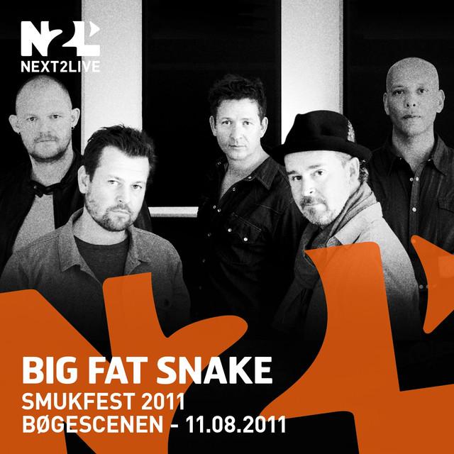 Smukfest 2011