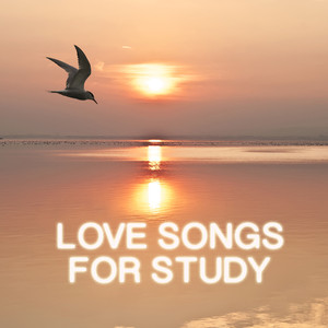 Love Songs for Study Albumcover