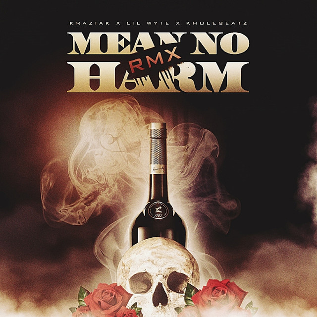 Mean No Harm RMX