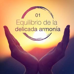 Equilibrio de la delicada armonía, Vol. 1 Albumcover
