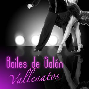 Bailes de Salon: Vallenatos Albumcover