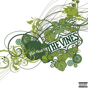 Best Of The Vines - Vines