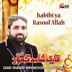 Habibi Ya Rasool Allah, Vol. 9 - Islamic Naats Albümü