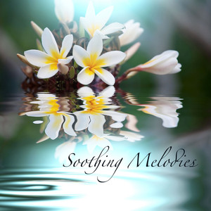 Soothing Melodies, Relaxing Healing Songs With Sounds of Nature, Water and Rain Albumcover