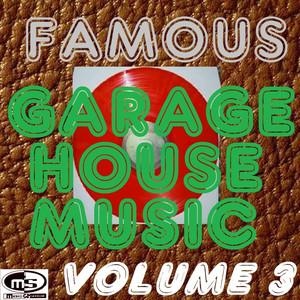 Famous Garage House Music, Vol. 3 (DJ Megamix) album