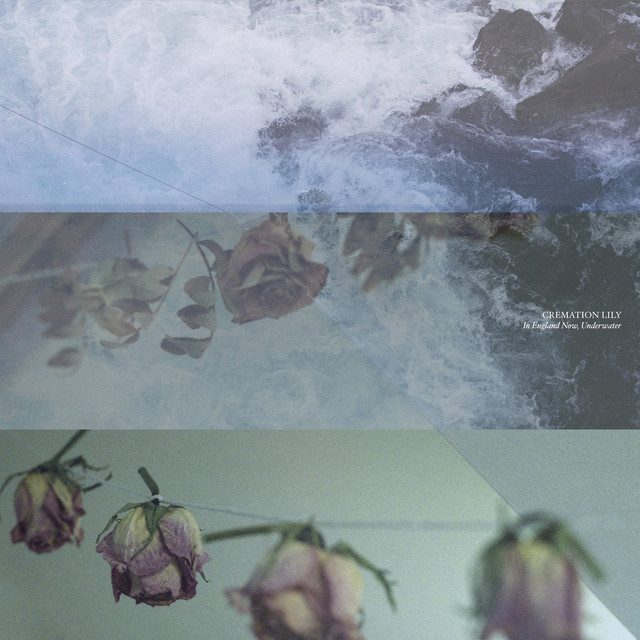 Album cover for In England Now, Underwater by Cremation Lily