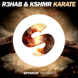 Karate Albümü
