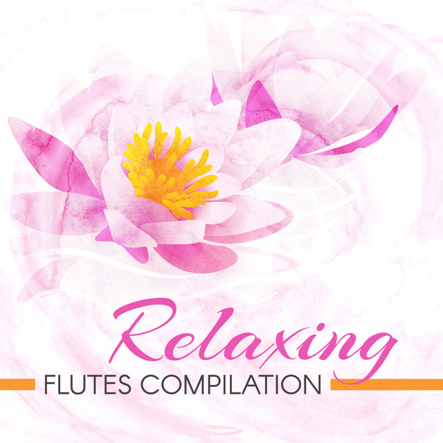 Traditional Irish Flute Spa Sounds, a song by Flute Music