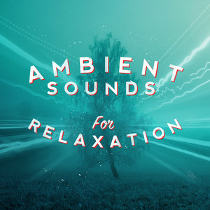 Ambient Sounds for Relaxation Albumcover