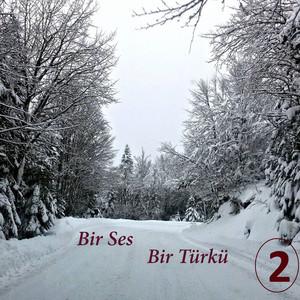 Bir Ses Bir Türkü, Vol.2 Albümü