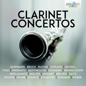 Clarinet Concerto in G Minor, Op. 29: II. Adagio