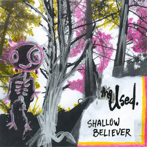 Shallow Believer album