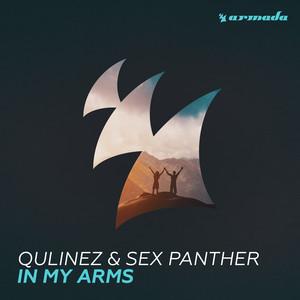 Copertina di Qulinez - In My Arms