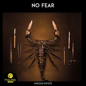 No Fear Albumcover