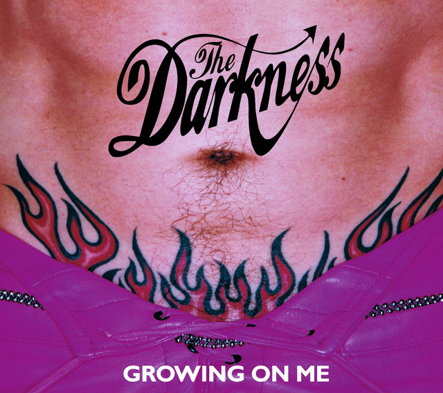 The Darkness Growing On Me album cover