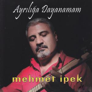 Turkcemuzikcom Mehmet Ipek Ayrılığa Dayanamam Albümü