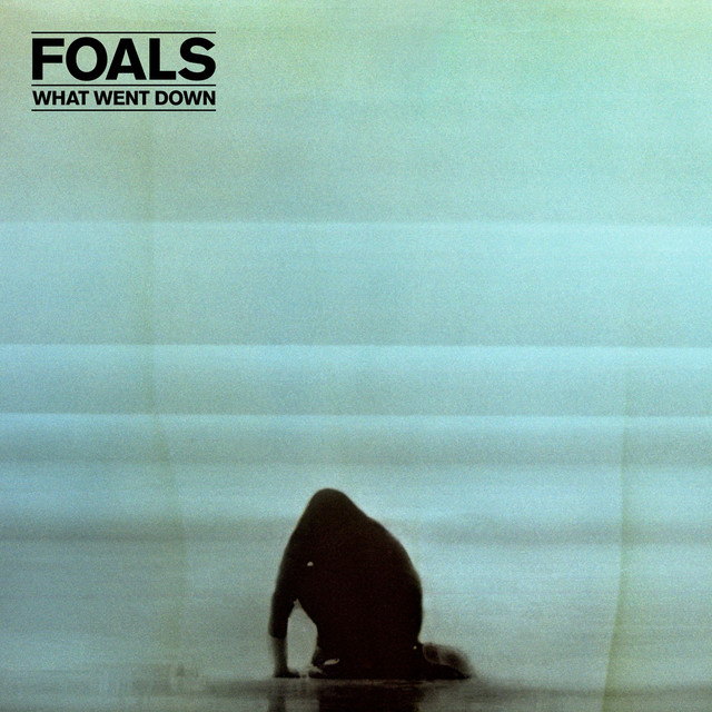 Album cover for What Went Down by Foals