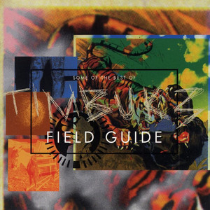 Field Guide: Some Of The Best Of Timbuk 3 album