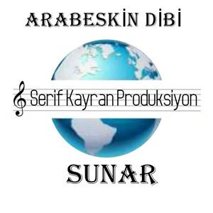 Arabeskin Dibi Albümü