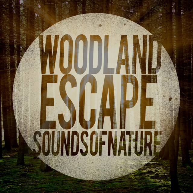 Woodland Escape: Sounds of Nature Albumcover