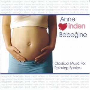 Anne Kalbinden Bebeğine Albümü