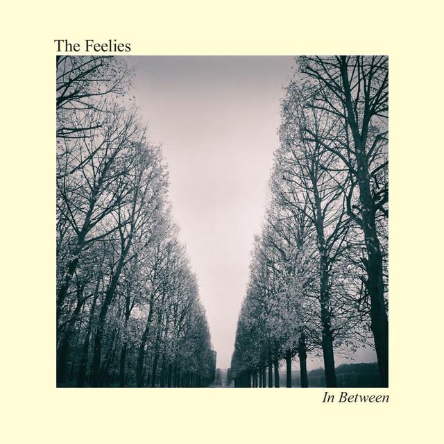 The Feelies In Between album cover