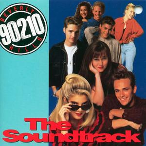 Vanessa Williams, Brian McKnight Love Is cover