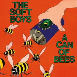 A Can of Bees album