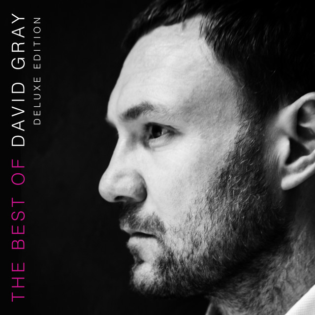 Album cover for The Best of David Gray (Deluxe Edition) by David Gray