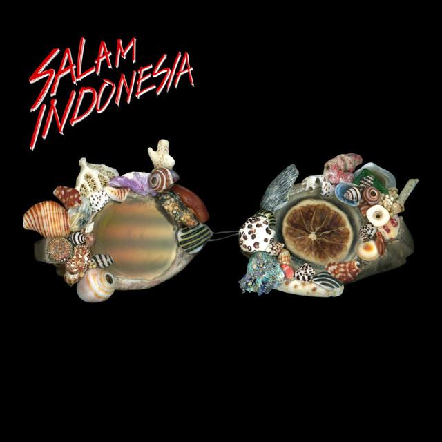 Album cover for Salam Indonesia by Endank Soekamti
