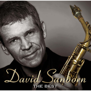 David Sanborn Lizz Wright Don't Let Me Be Lonely Tonight cover