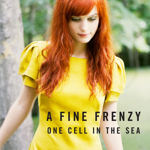 A Fine Frenzy You Picked Me cover