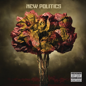 New Politics Albumcover