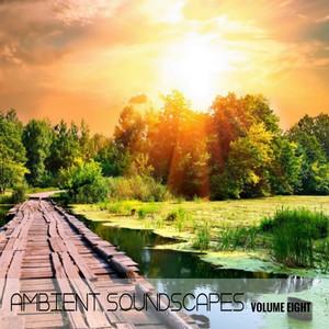 Ambient SoundScapes, Vol. 8 album